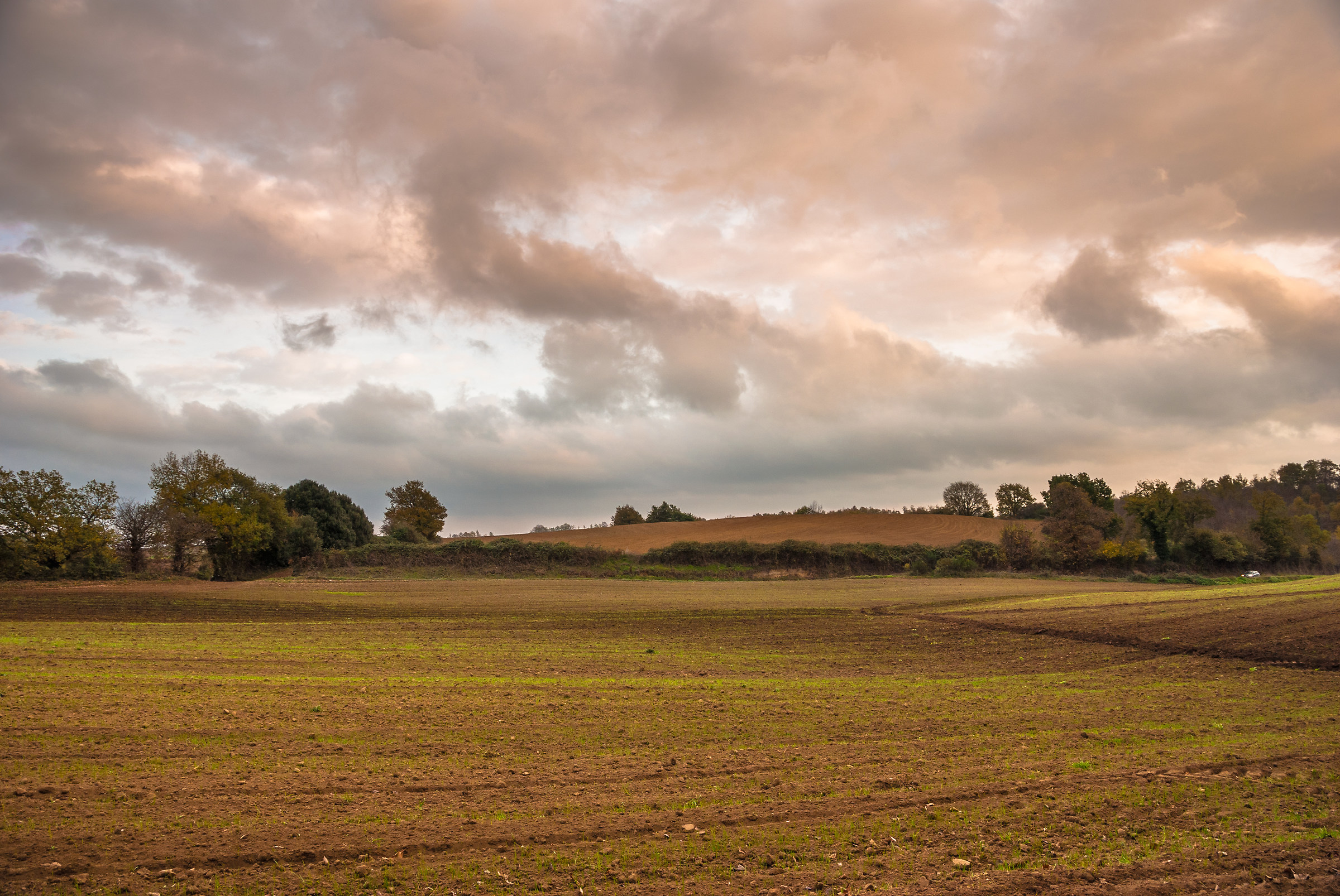 Maremma countryside...