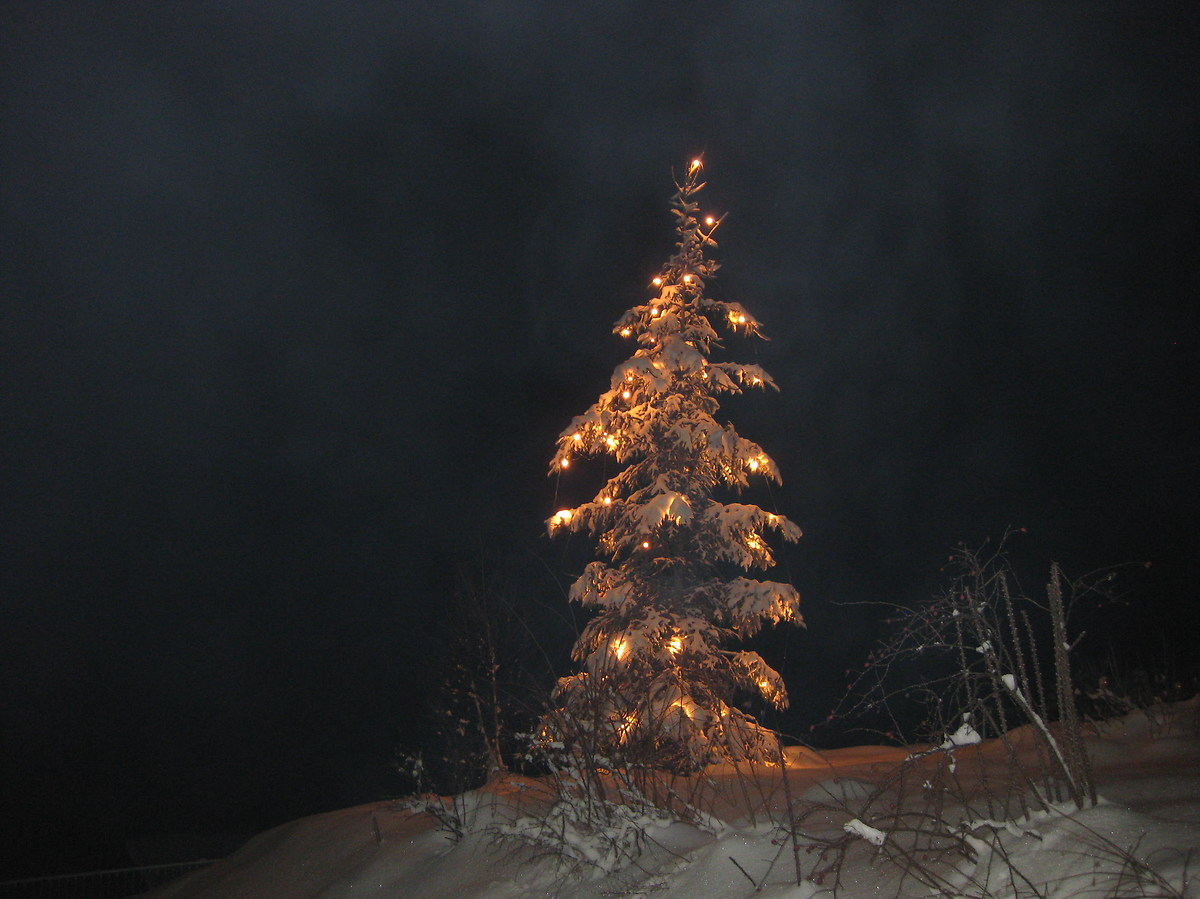 Merry Christmas Juzini ......