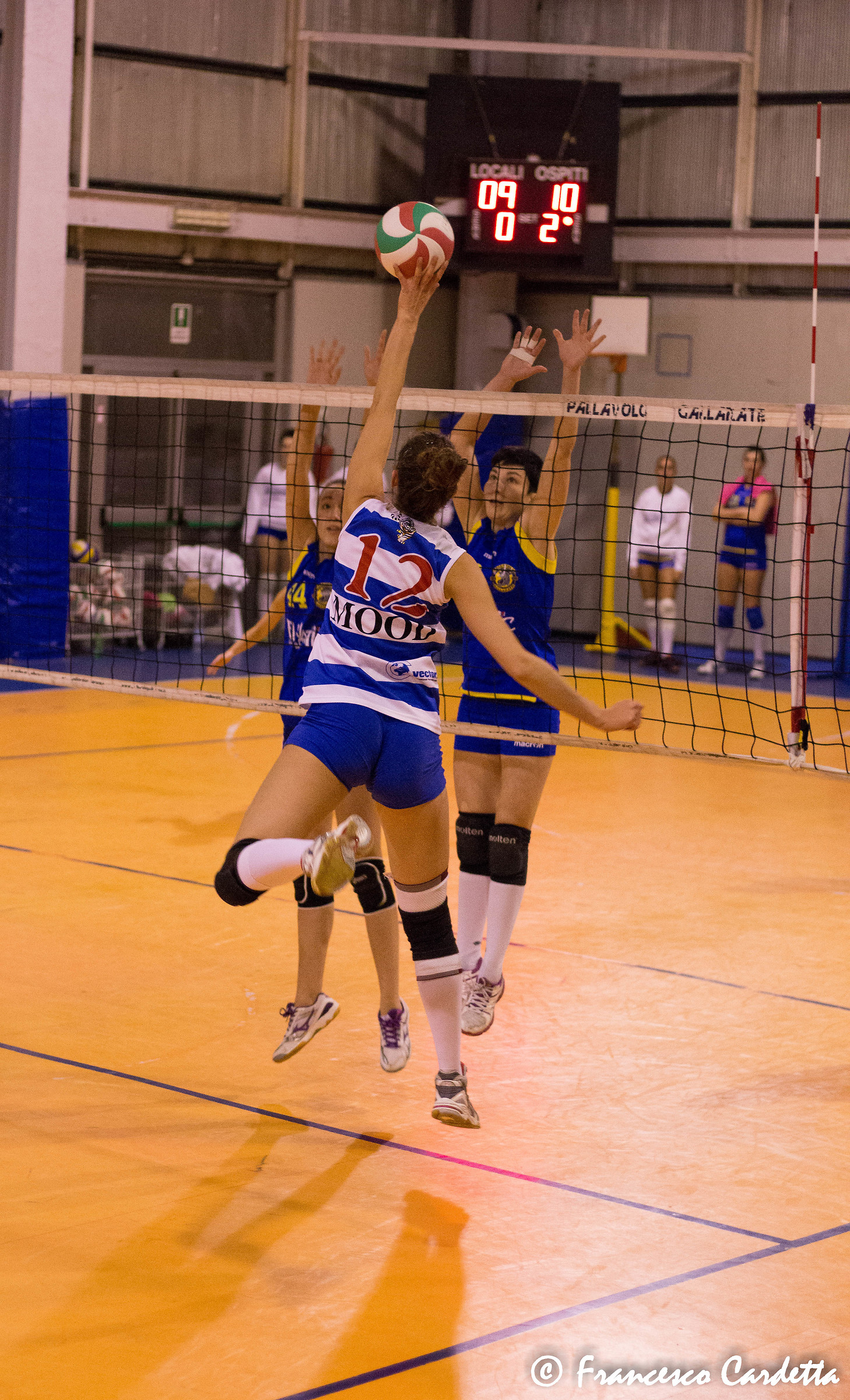 Volleyball...