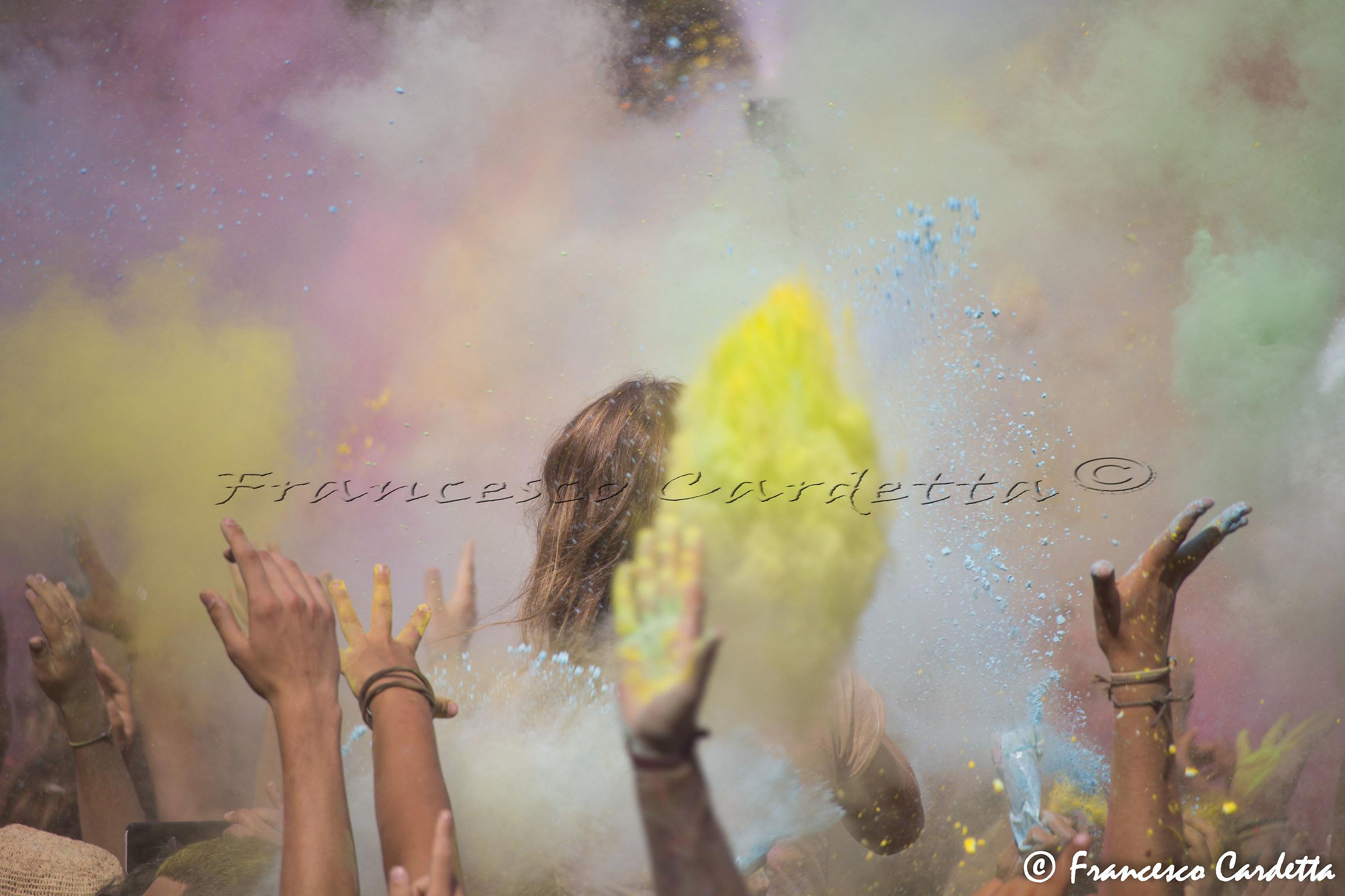 Elba summer color...