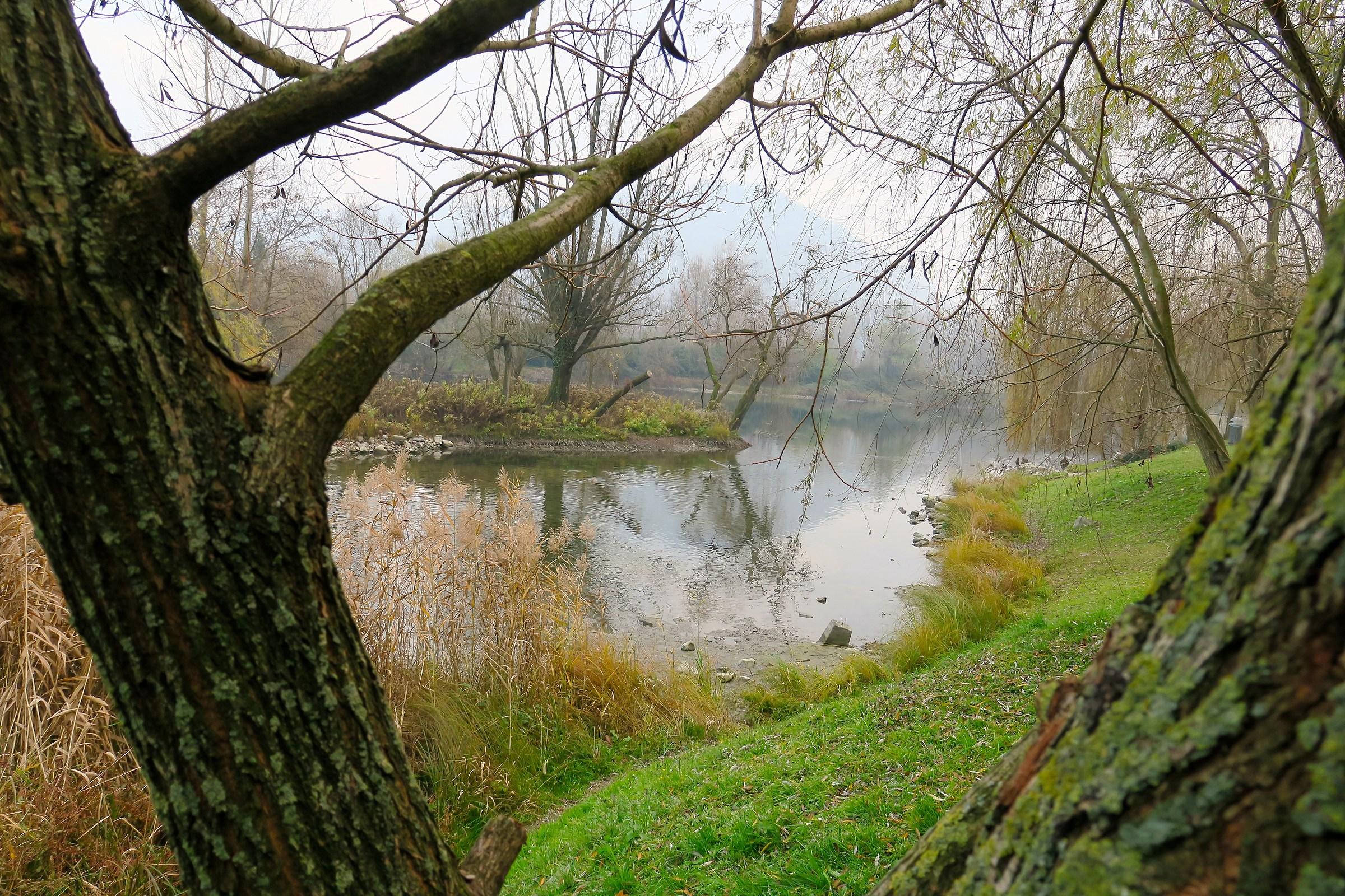 Isolotto di Brivio, autunno...