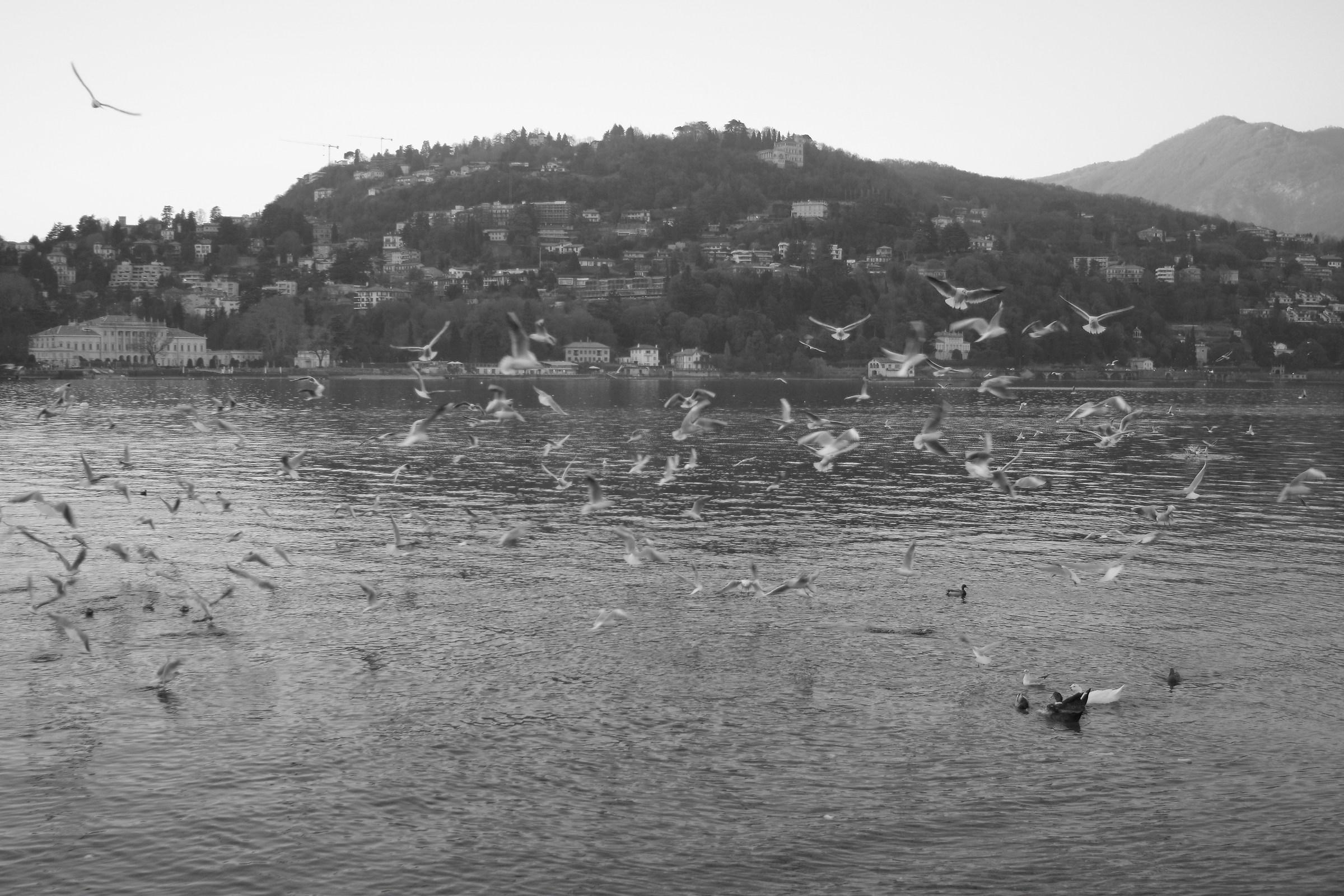 lakefront in Como...