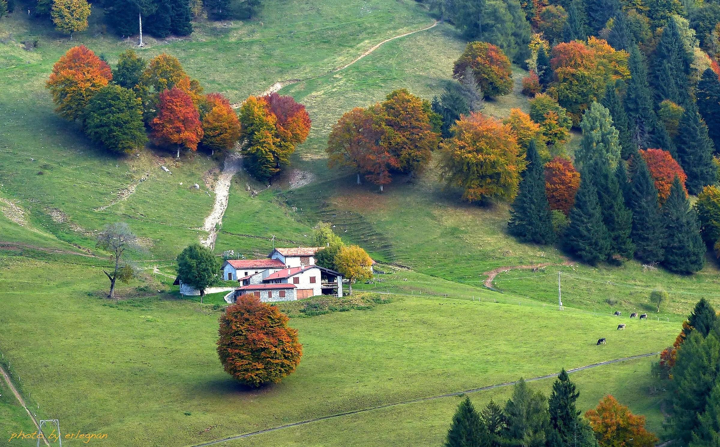 alpine landscape...