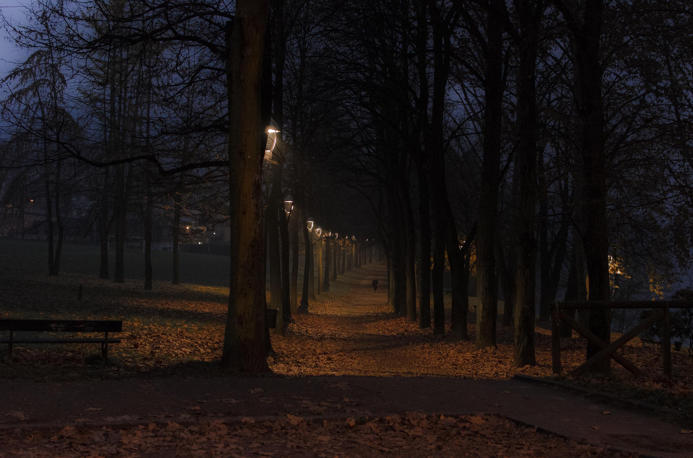 Prime luci dell'alba a Torino...