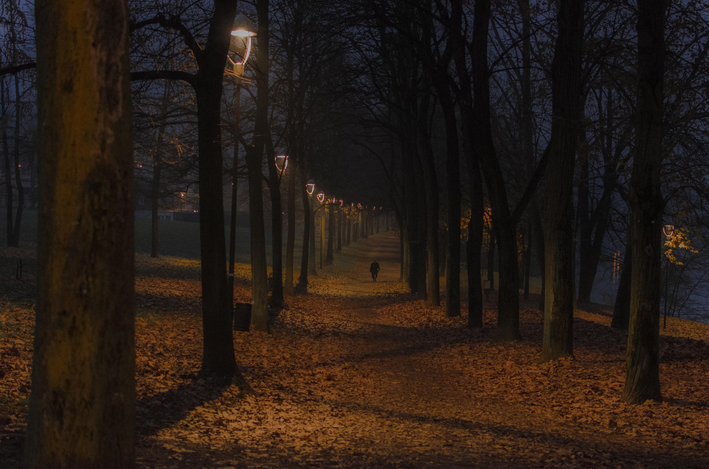 Prime luci dell'alba a Torino (crop)...