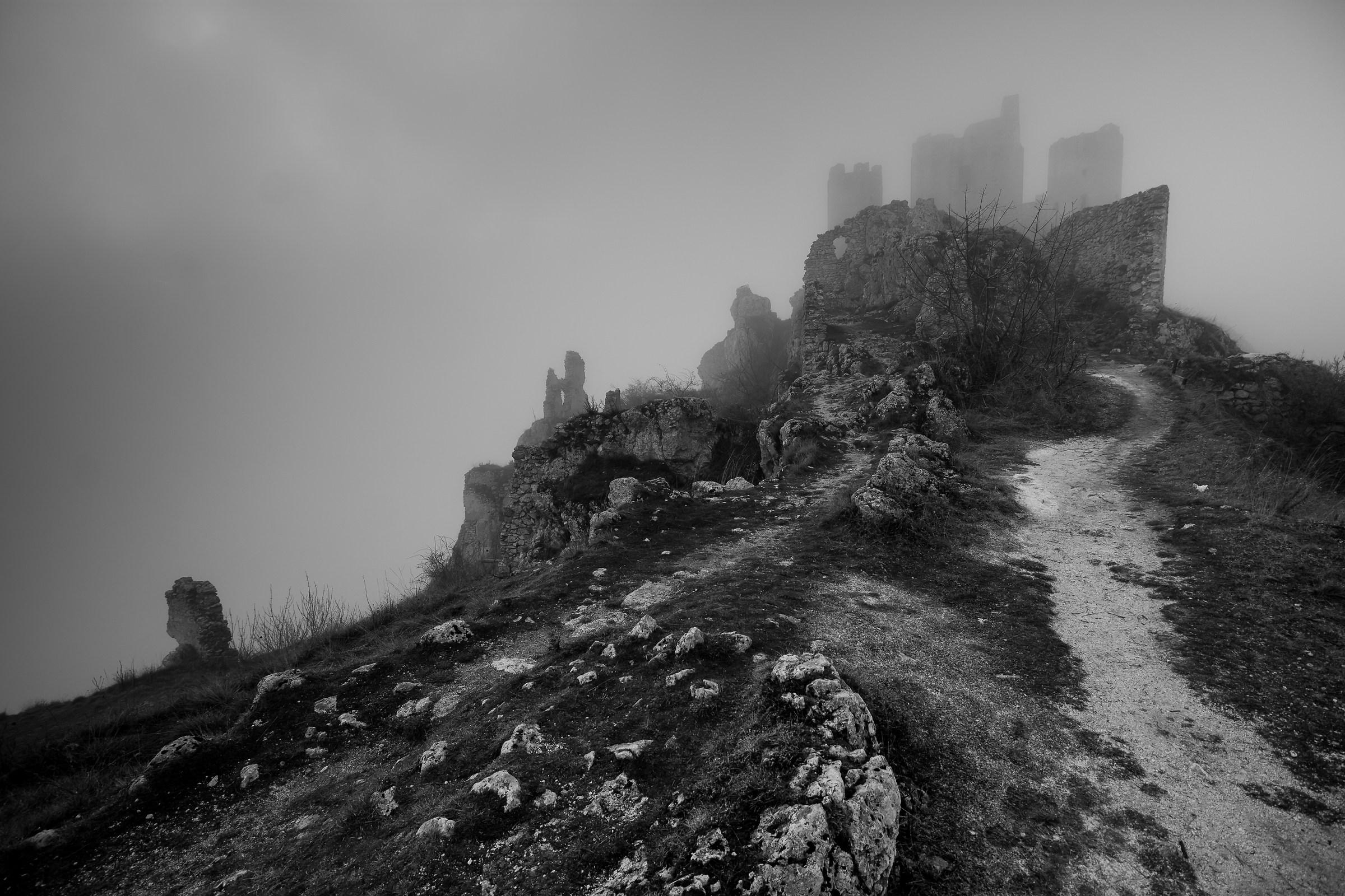 Ladyhawke through the fog...