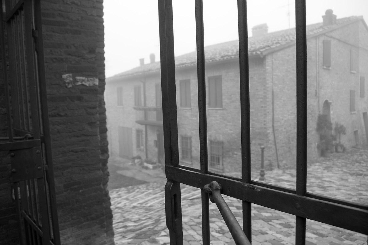 Fog Longiano...