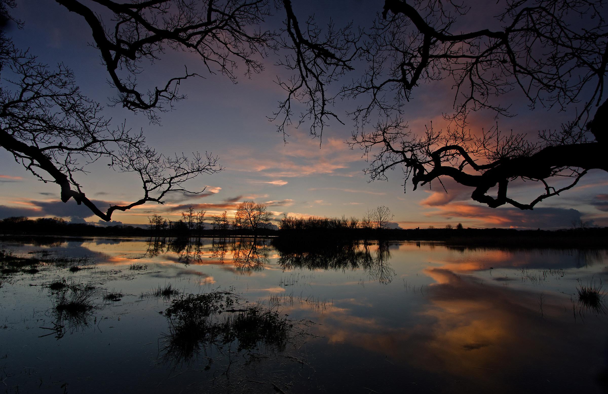 Sotto la Quercia grande (inondazioni al tramonto)...