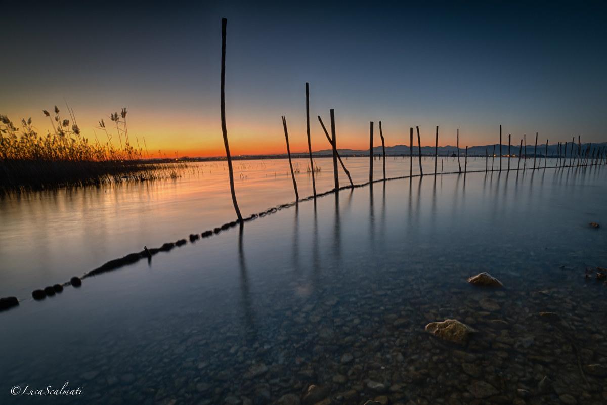 Fishing Line...
