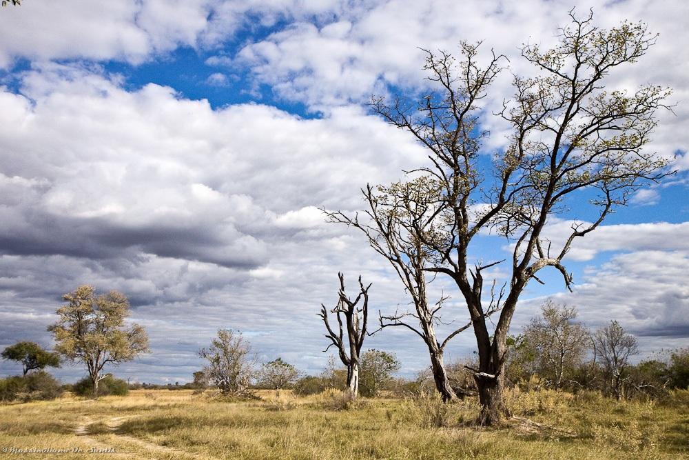 Botswana...
