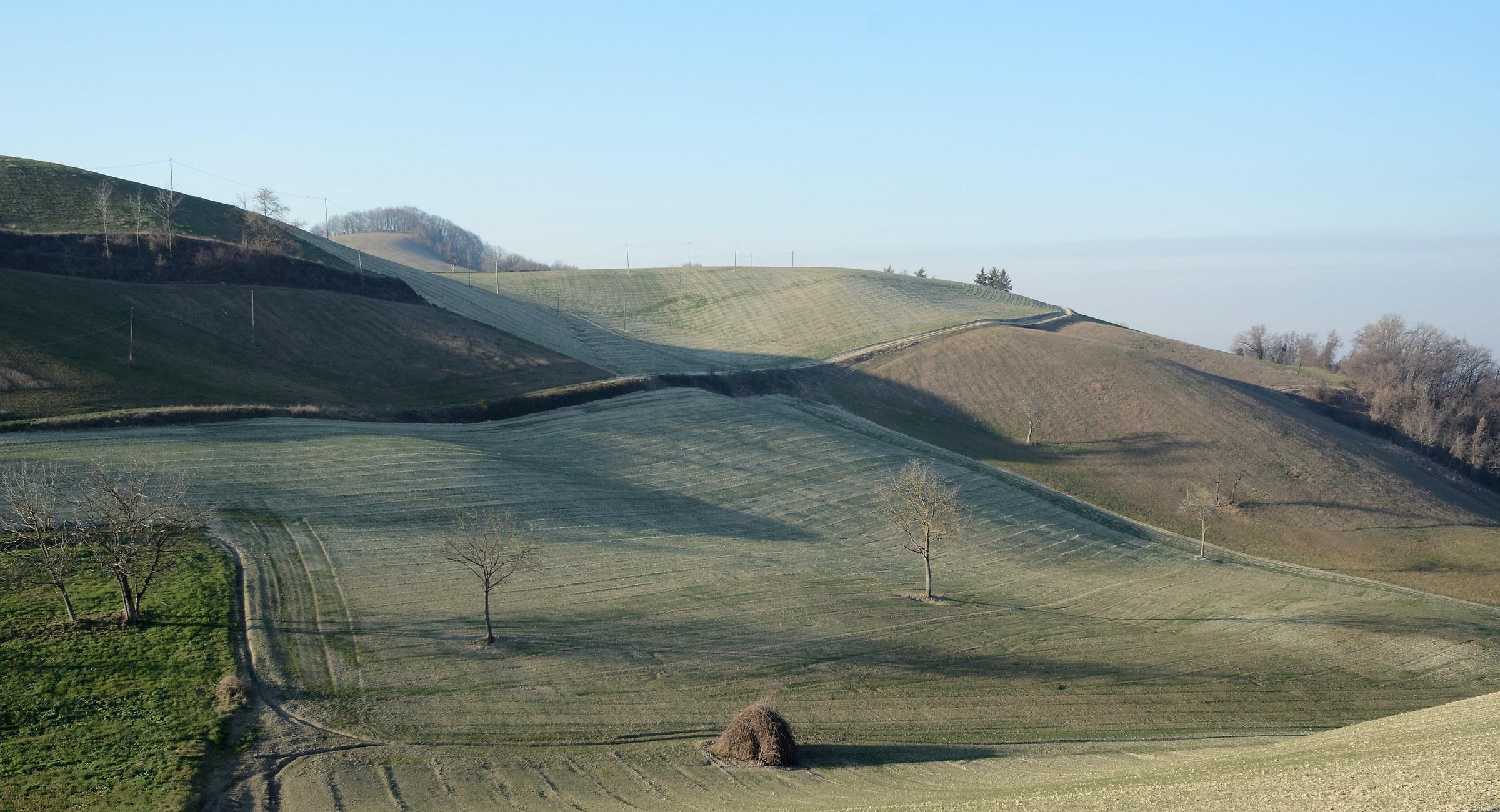 Sedignano, il non-colore delle colline invernali...