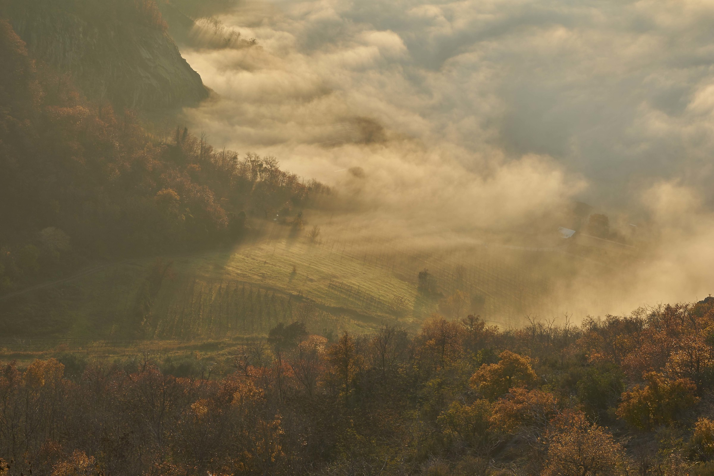 Fog from Saint Anthony...