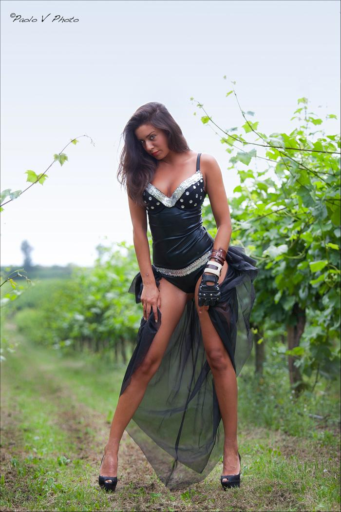 Between the vineyards of Franciacorta ... ......