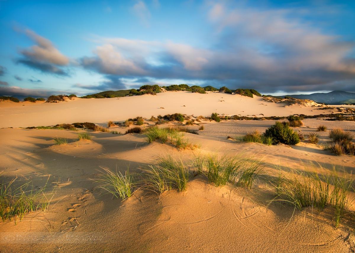 Circles of sand - desert dunes Piscinas...