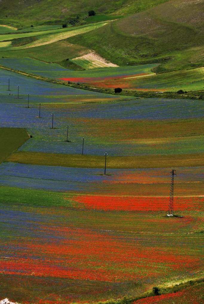 Plain of Castelluccio...