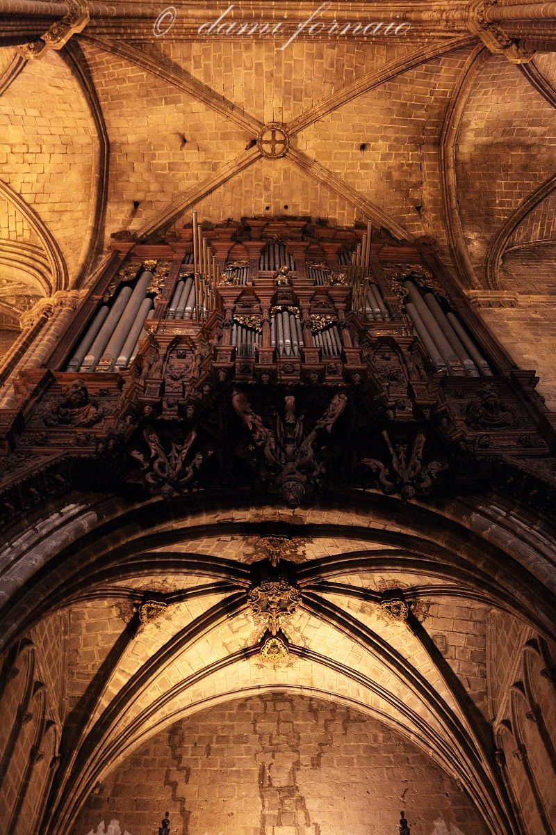 the body of the Gothic Cathedral...
