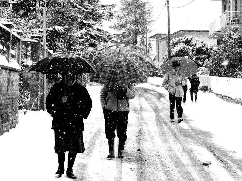 Snow 2012...