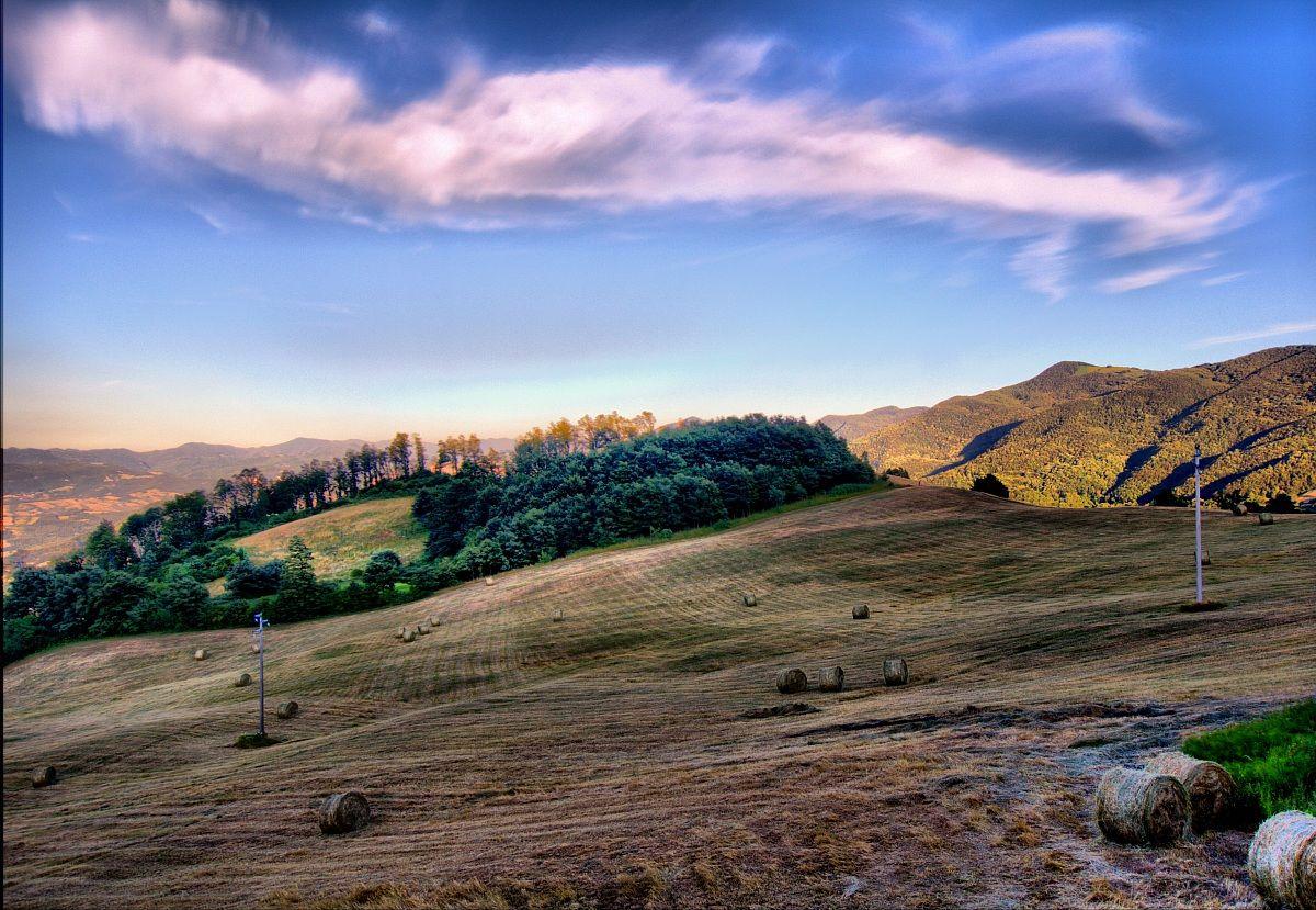 Paesaggio Firenzuola - FI...