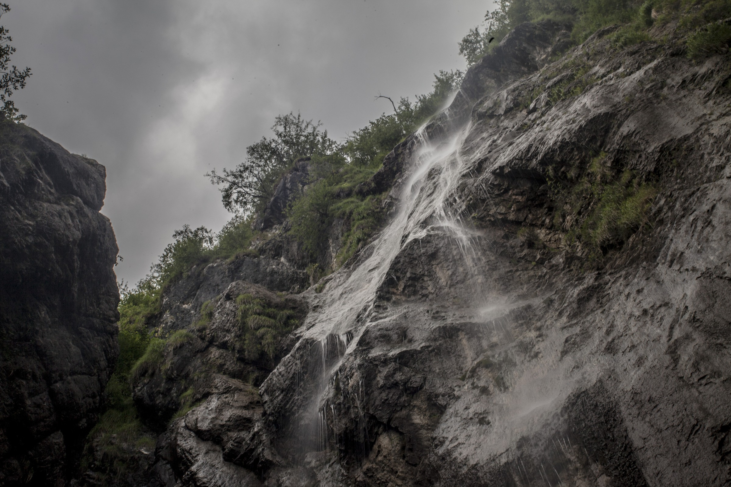 cascade Froda...