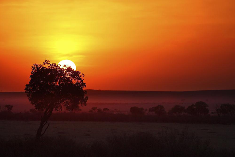 Masai Mara...