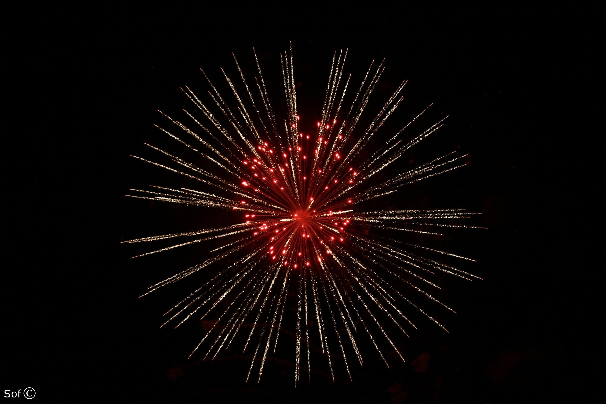Firework I...