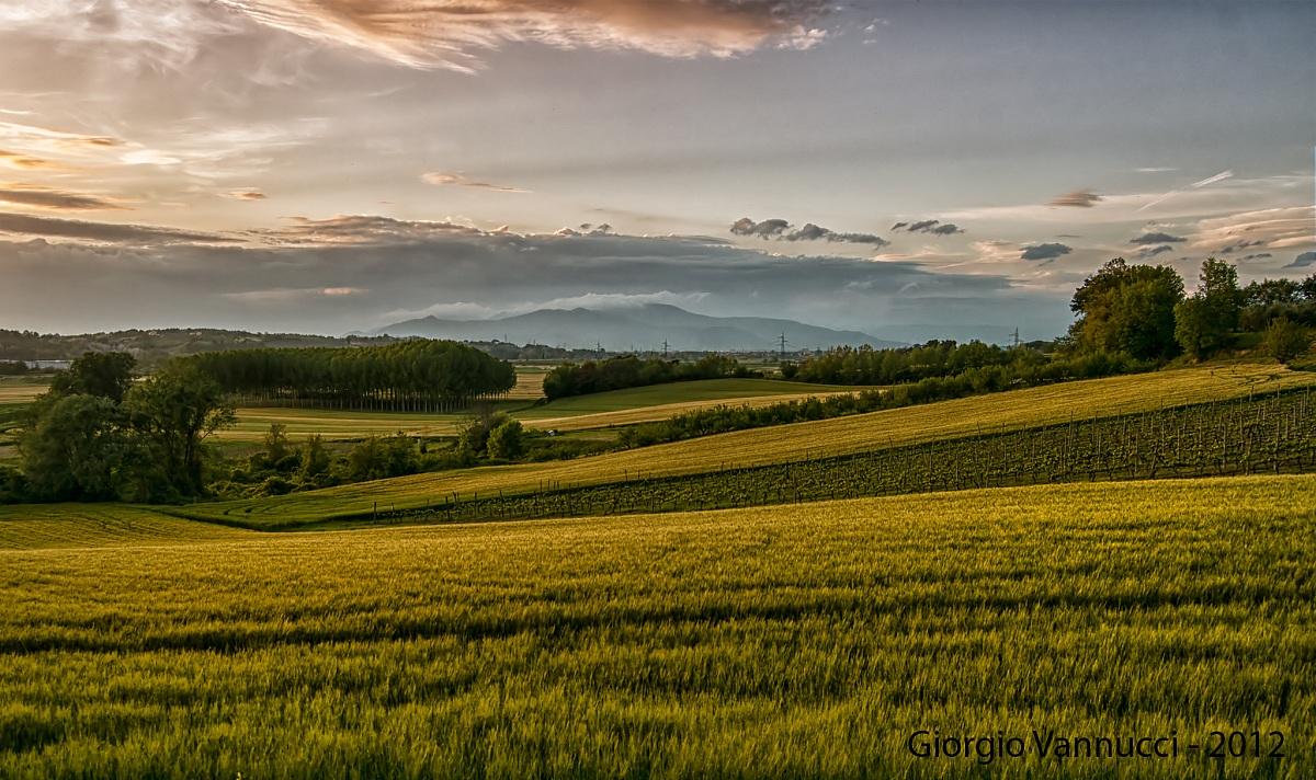 Colline toscane al tramonto juzaphoto for Piani di campagna in collina