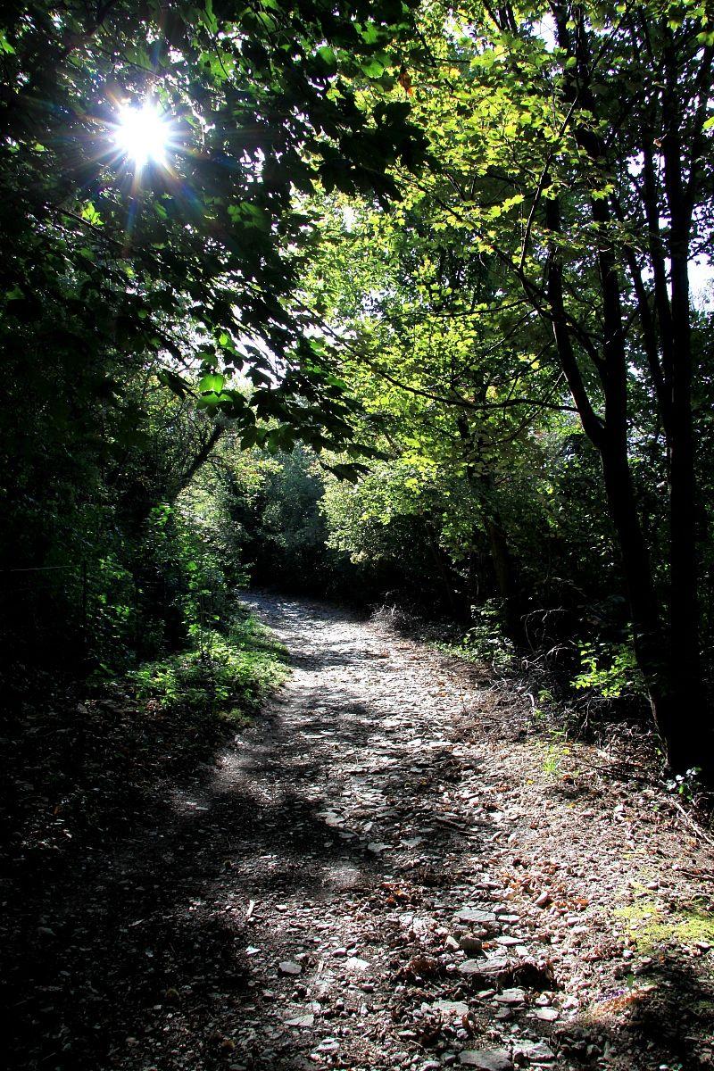 sentiero in maddalena...