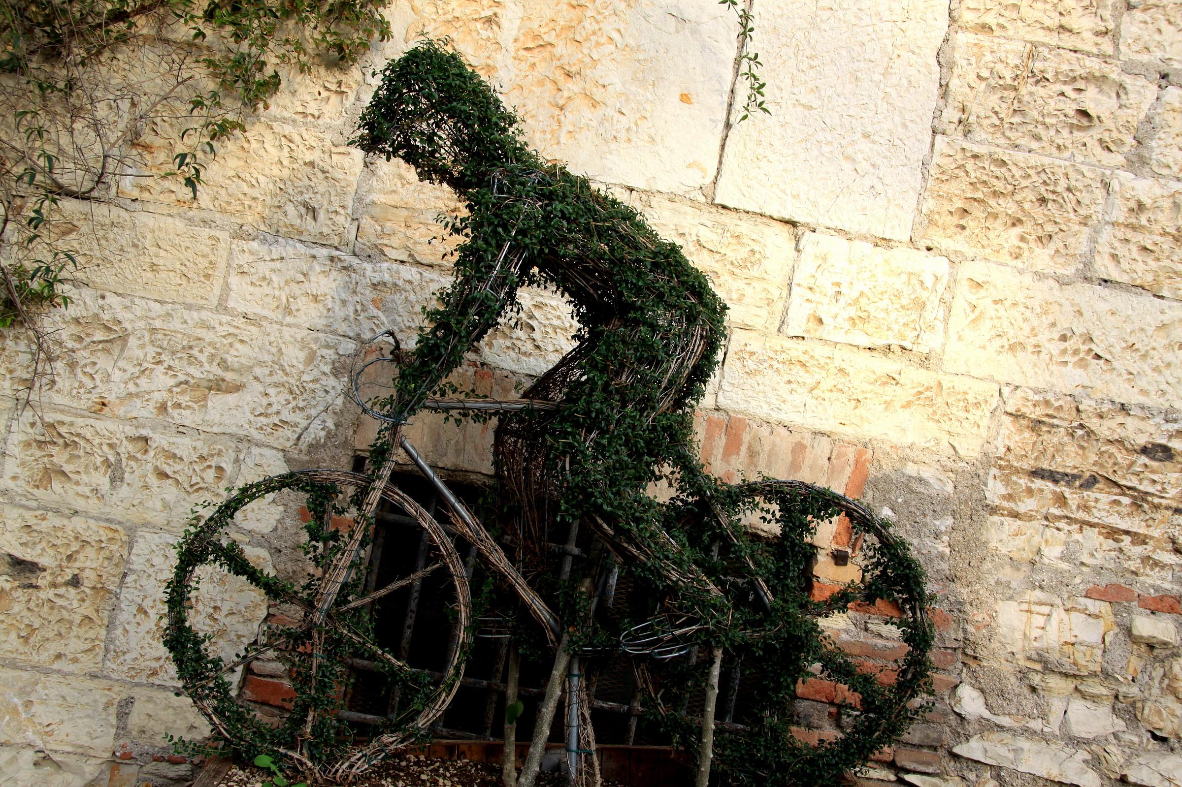 cyclist...