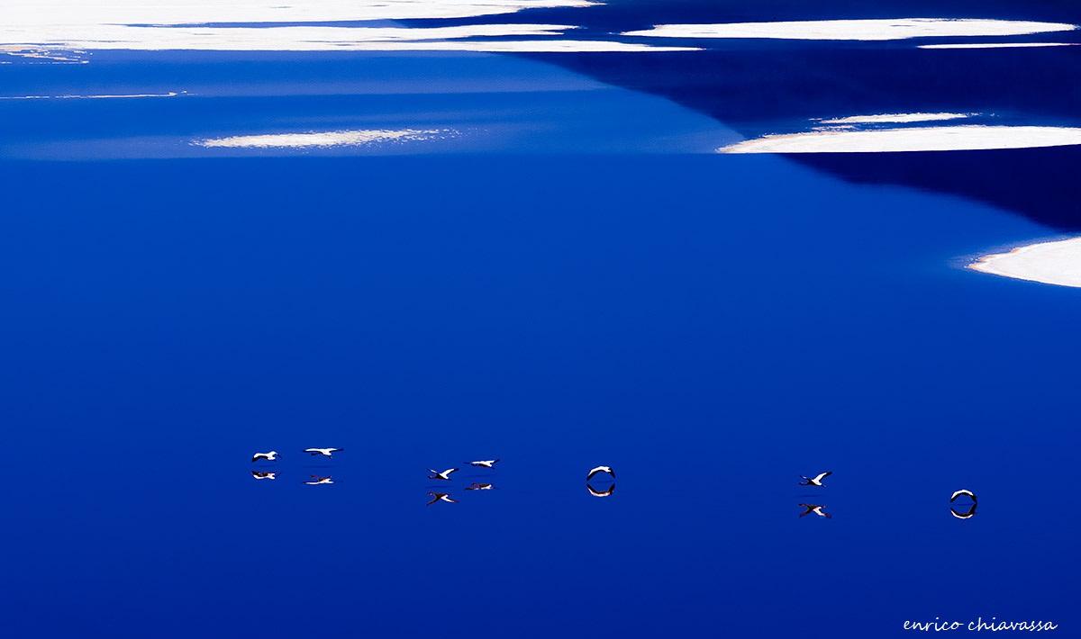 volare...nel blu...dipinto di blu...