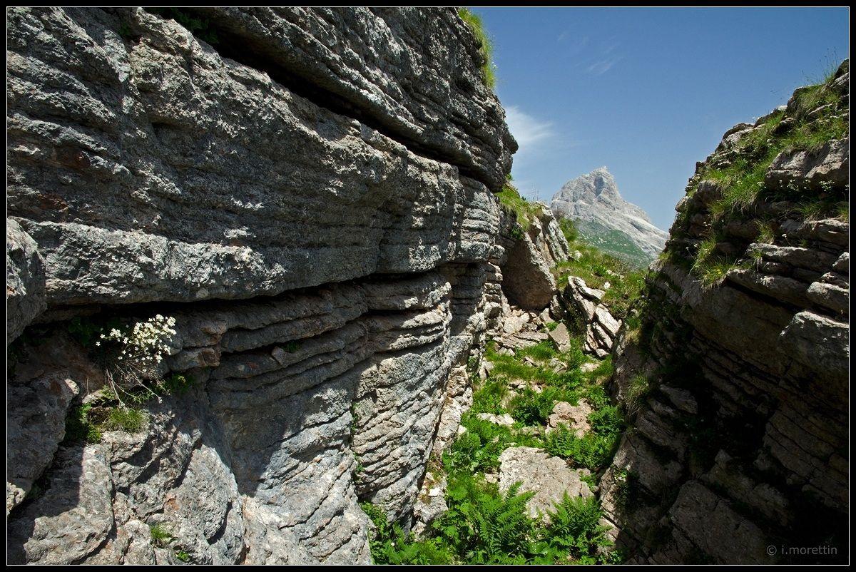 The Books of the mountain Lodina...
