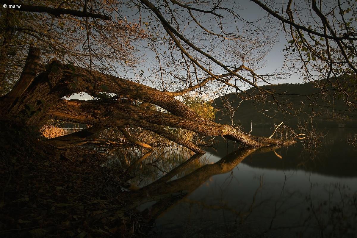 dawn lake avigliana...