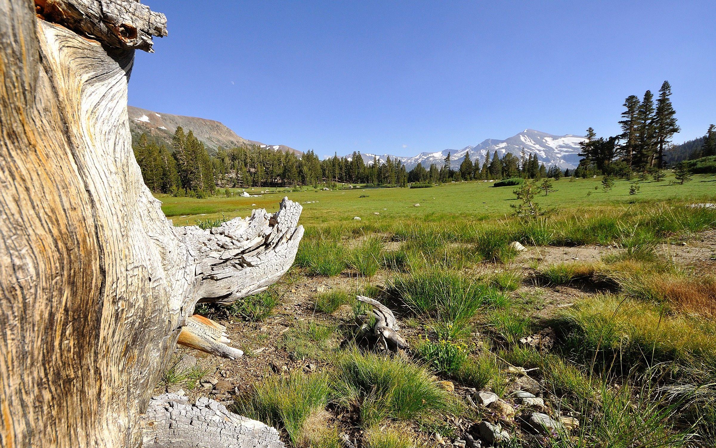 Yosemite...