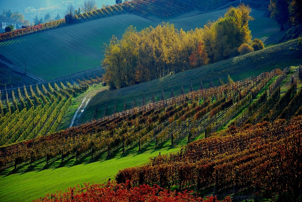 magic langhe 3...