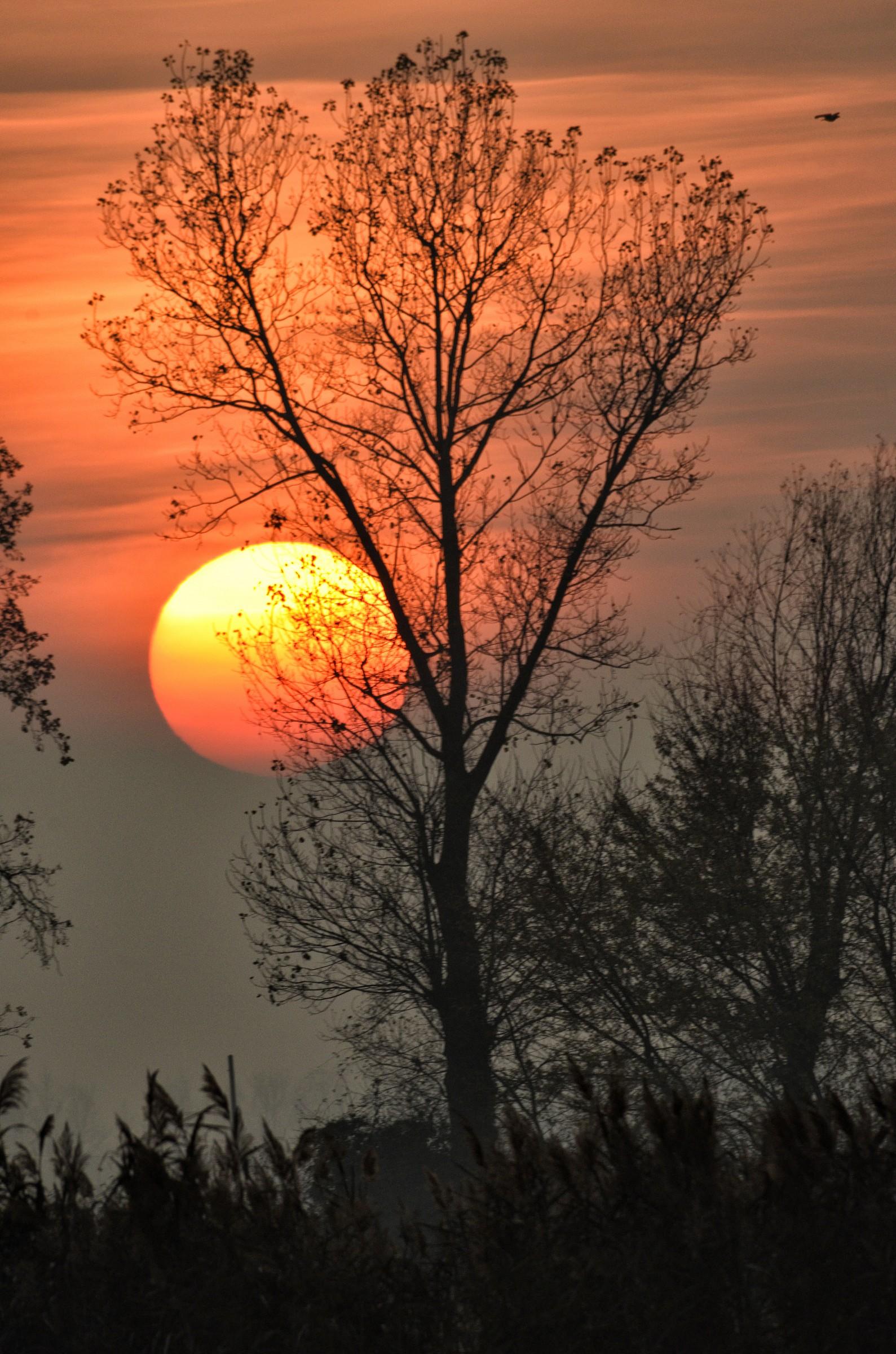 Coucher du soleil...