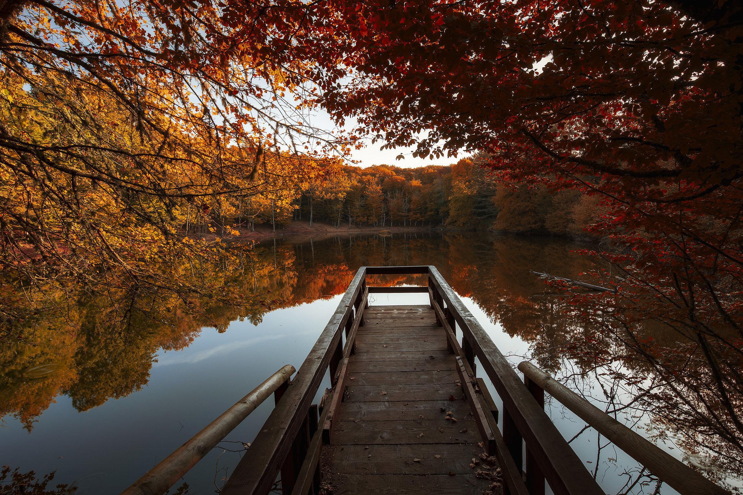 Welcome Autumn-Foresta Umbra...