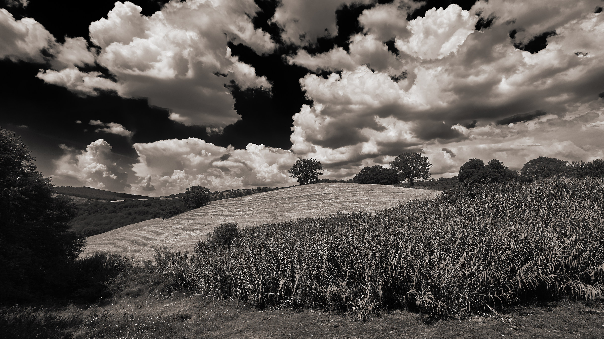 Tuscan countryside...
