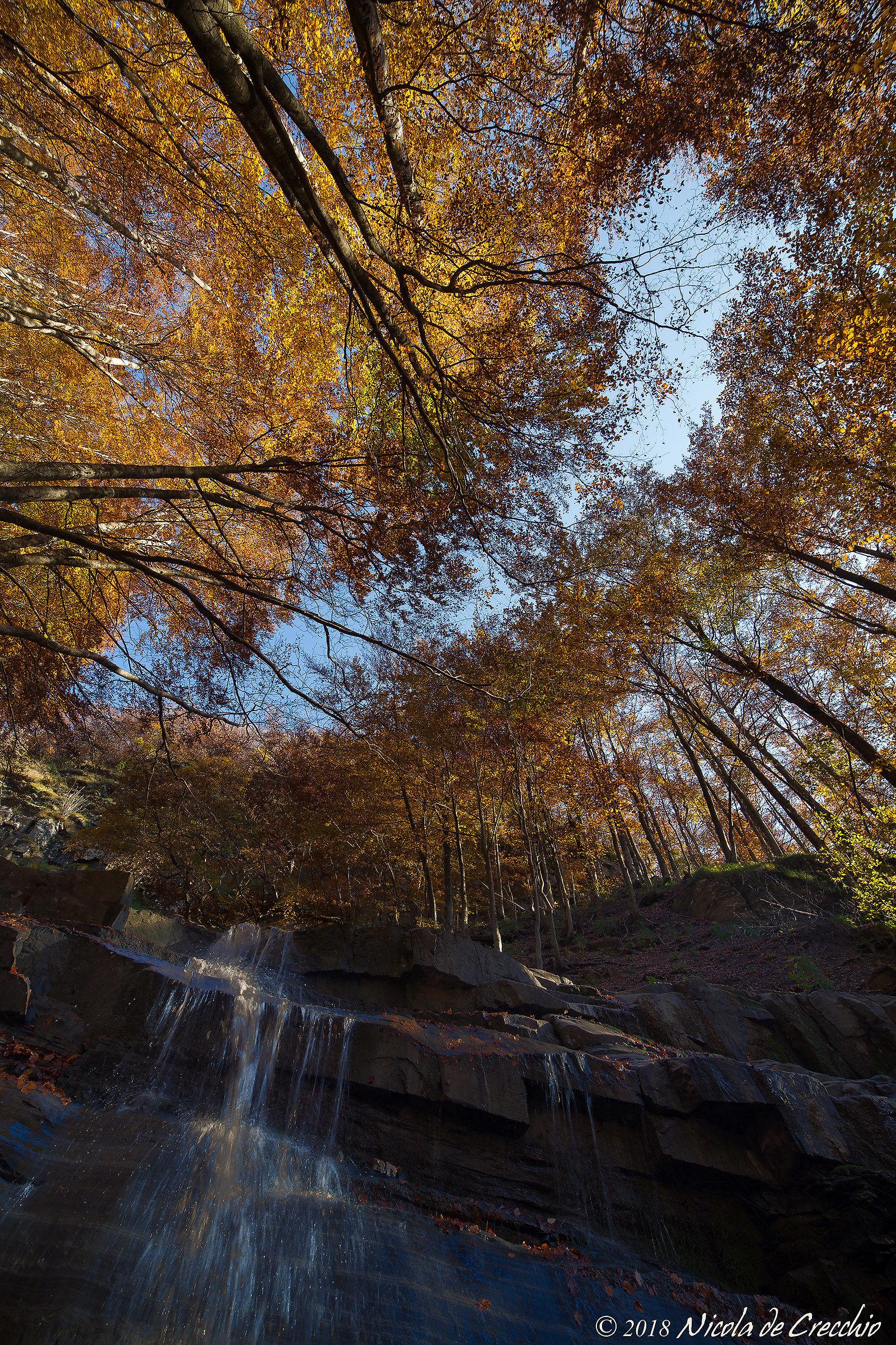 Autumn All Around...