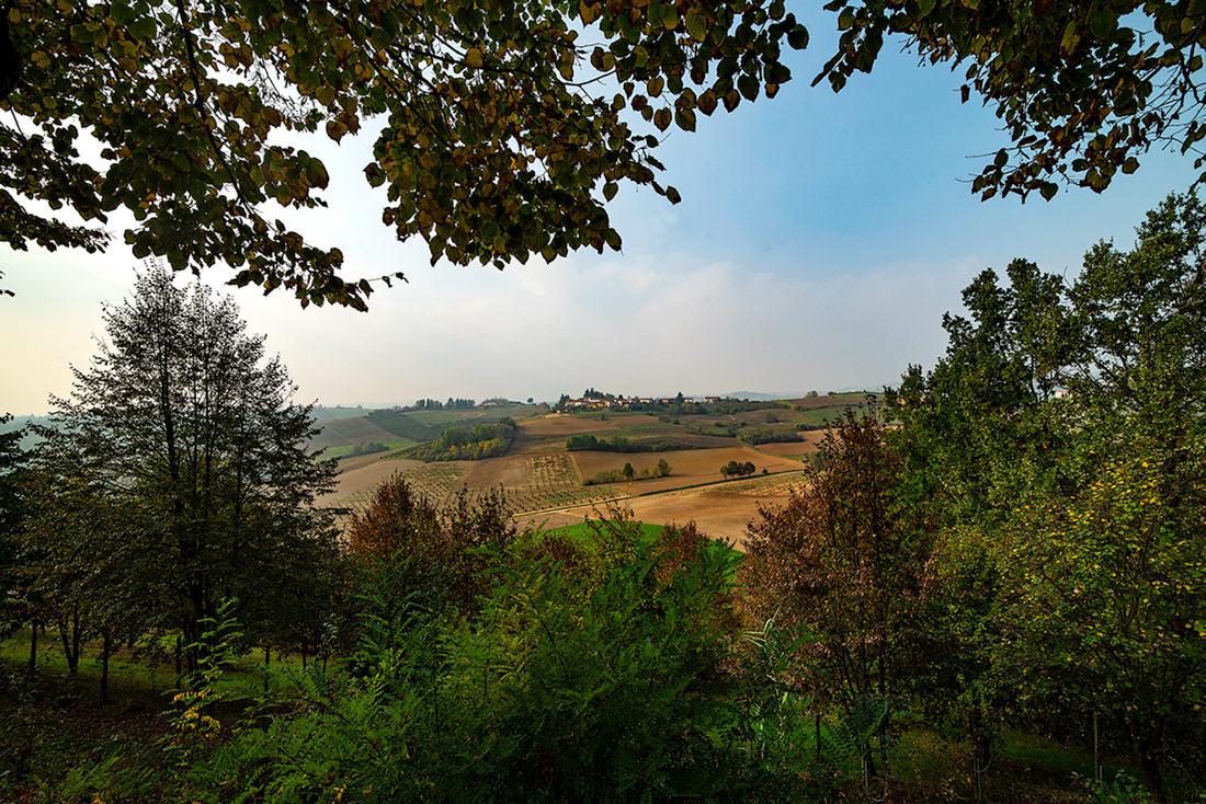Una finestra sul Monferrato...