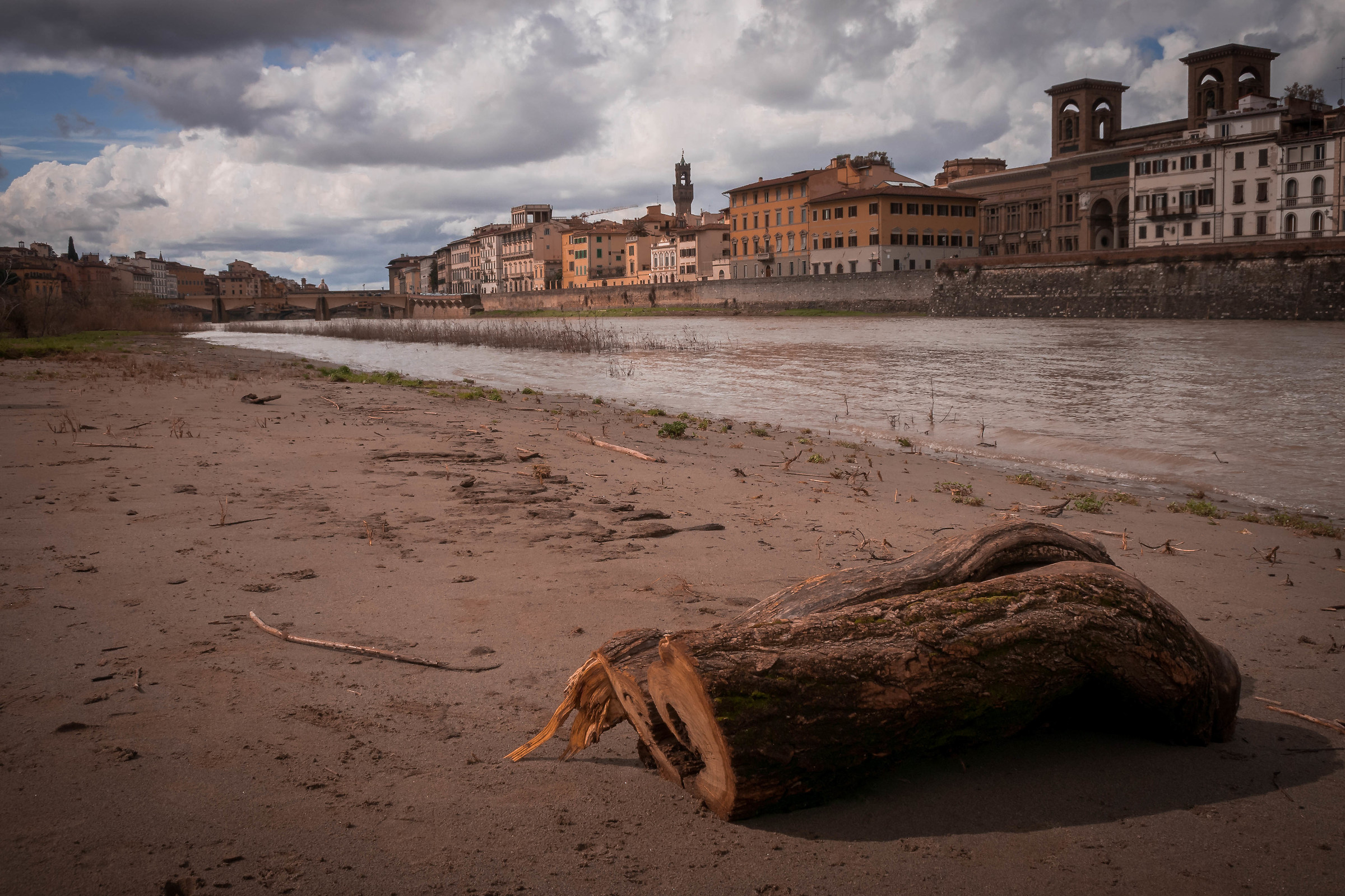 On the banks of the Arno...