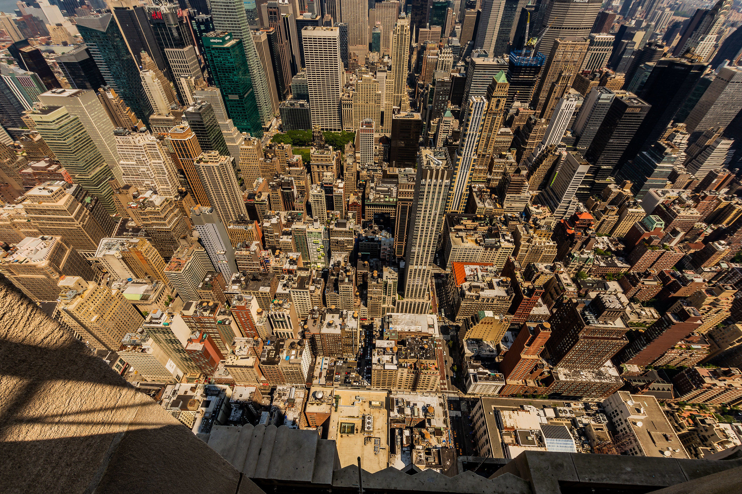New York from the top...