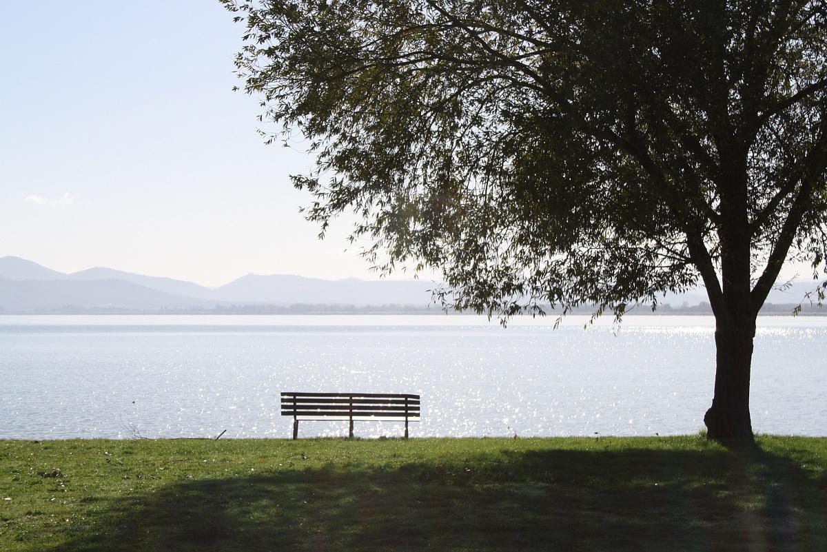 Empty bench...