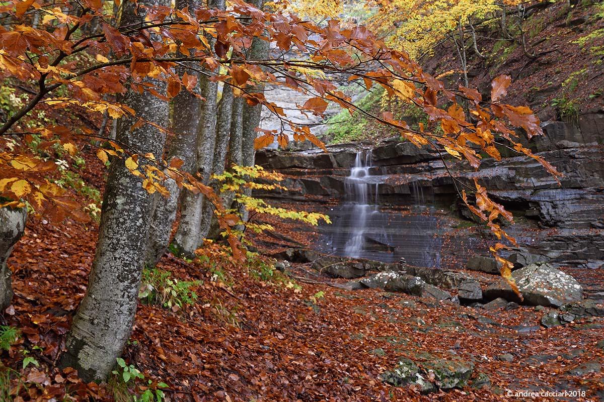 Lavacchiello Waterfall #4...