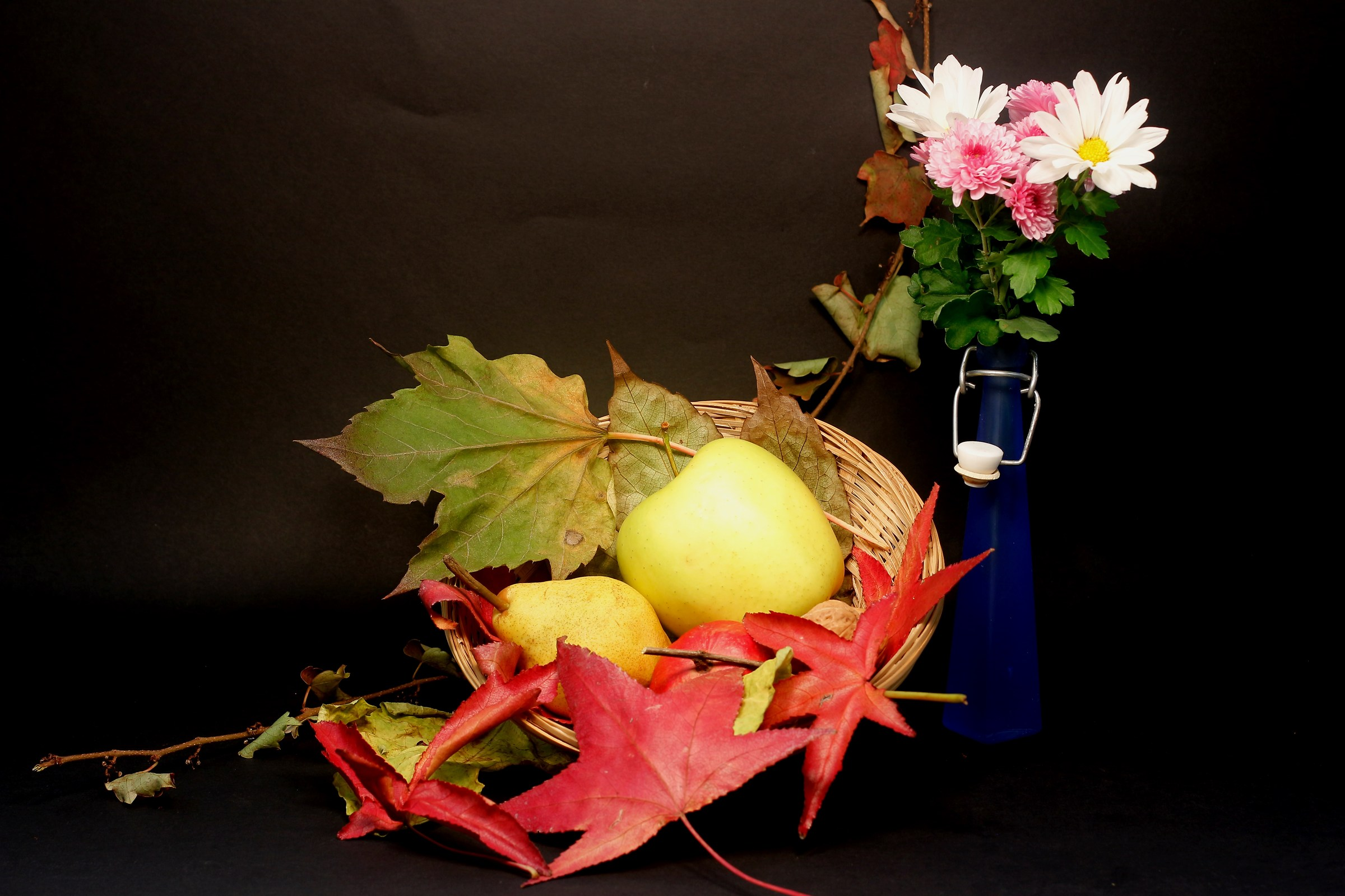 Autumn Flowers and fruits...