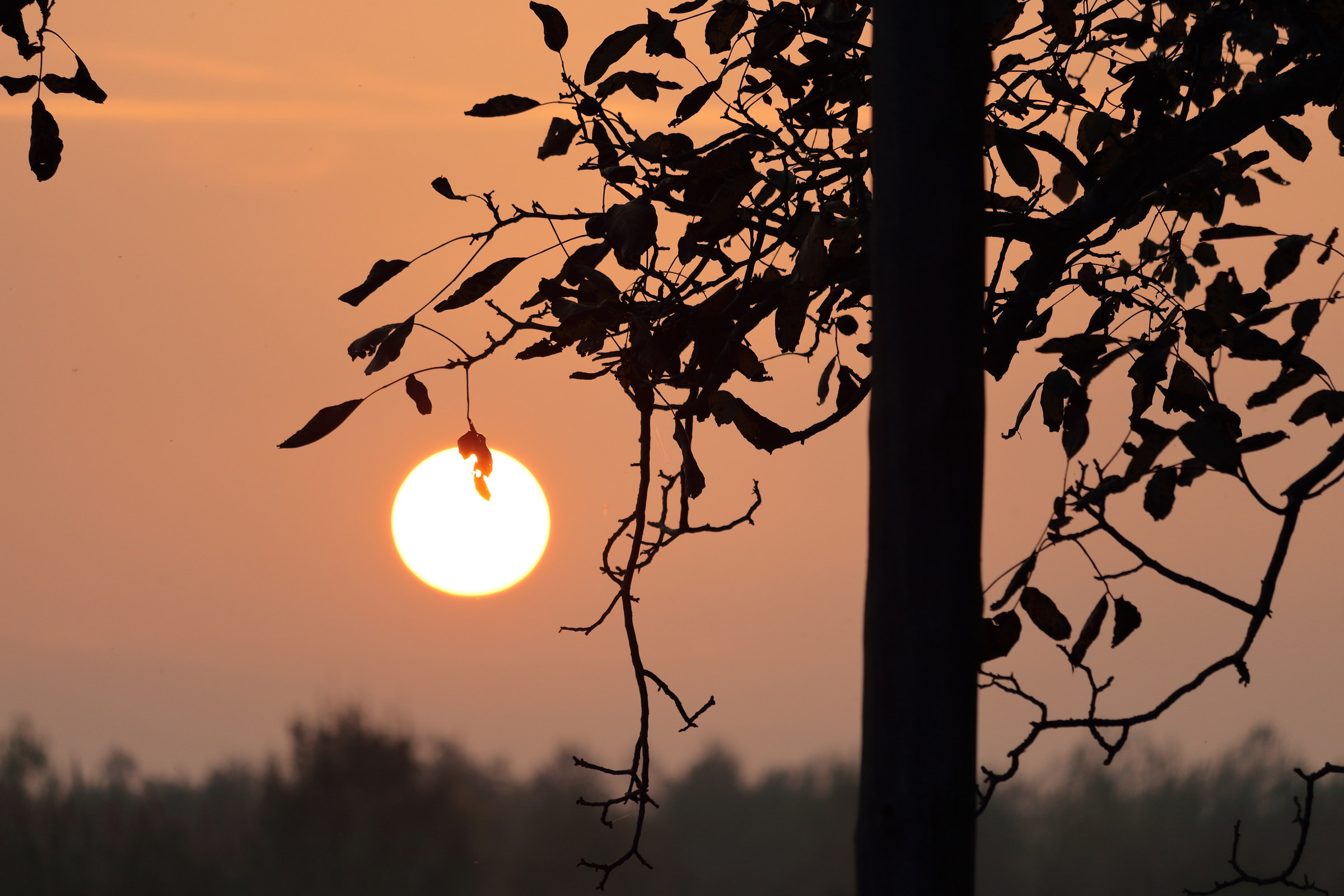 tramonto autunnale in campagna...