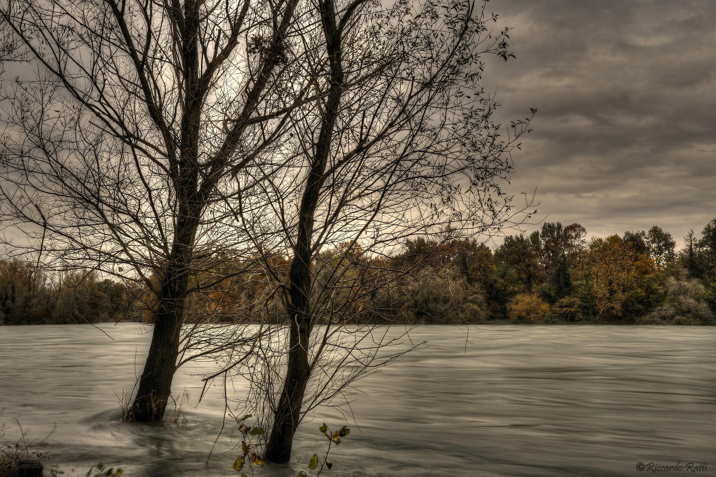 La corsa del fiume...