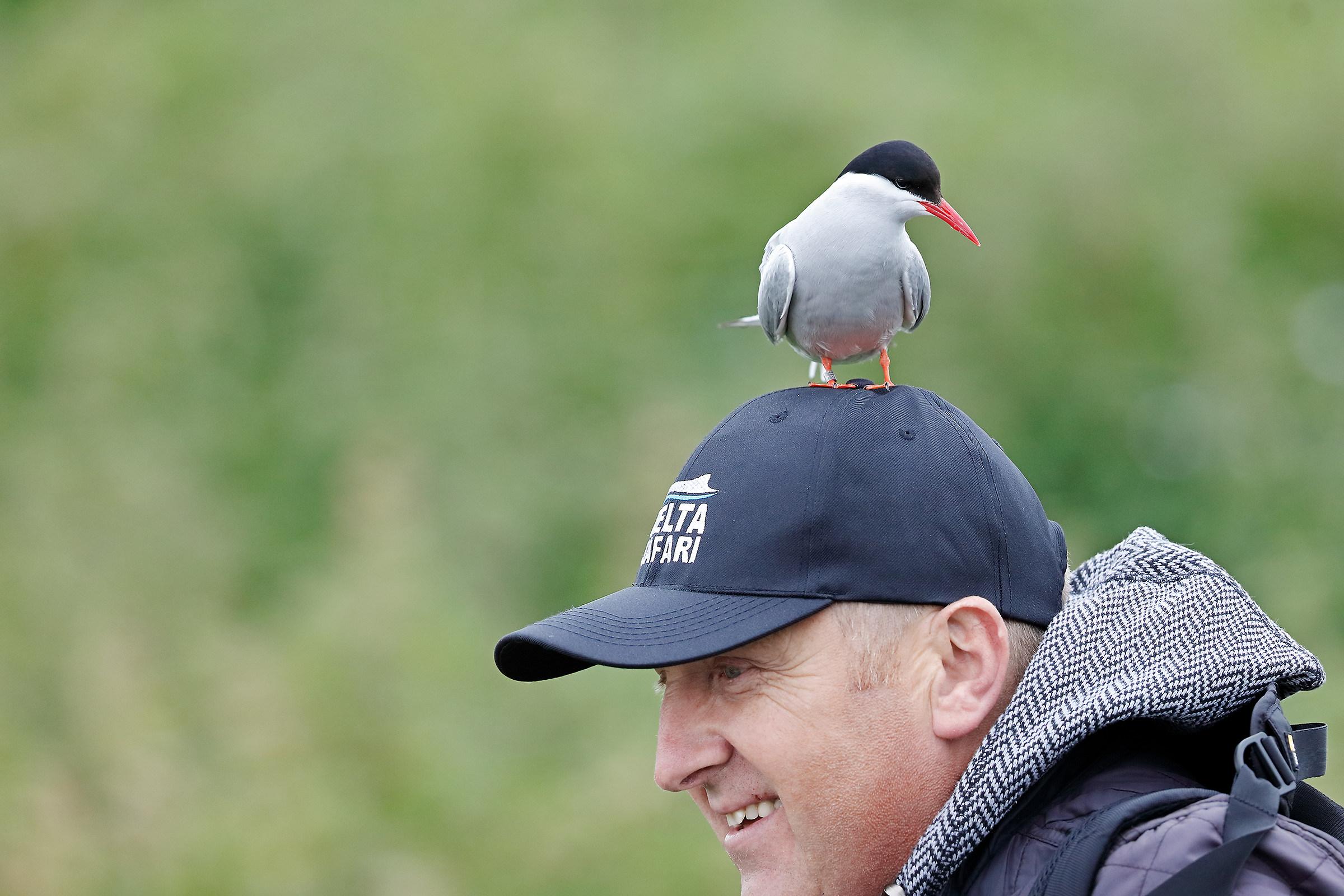 Originale ornamento per cappellino :)...