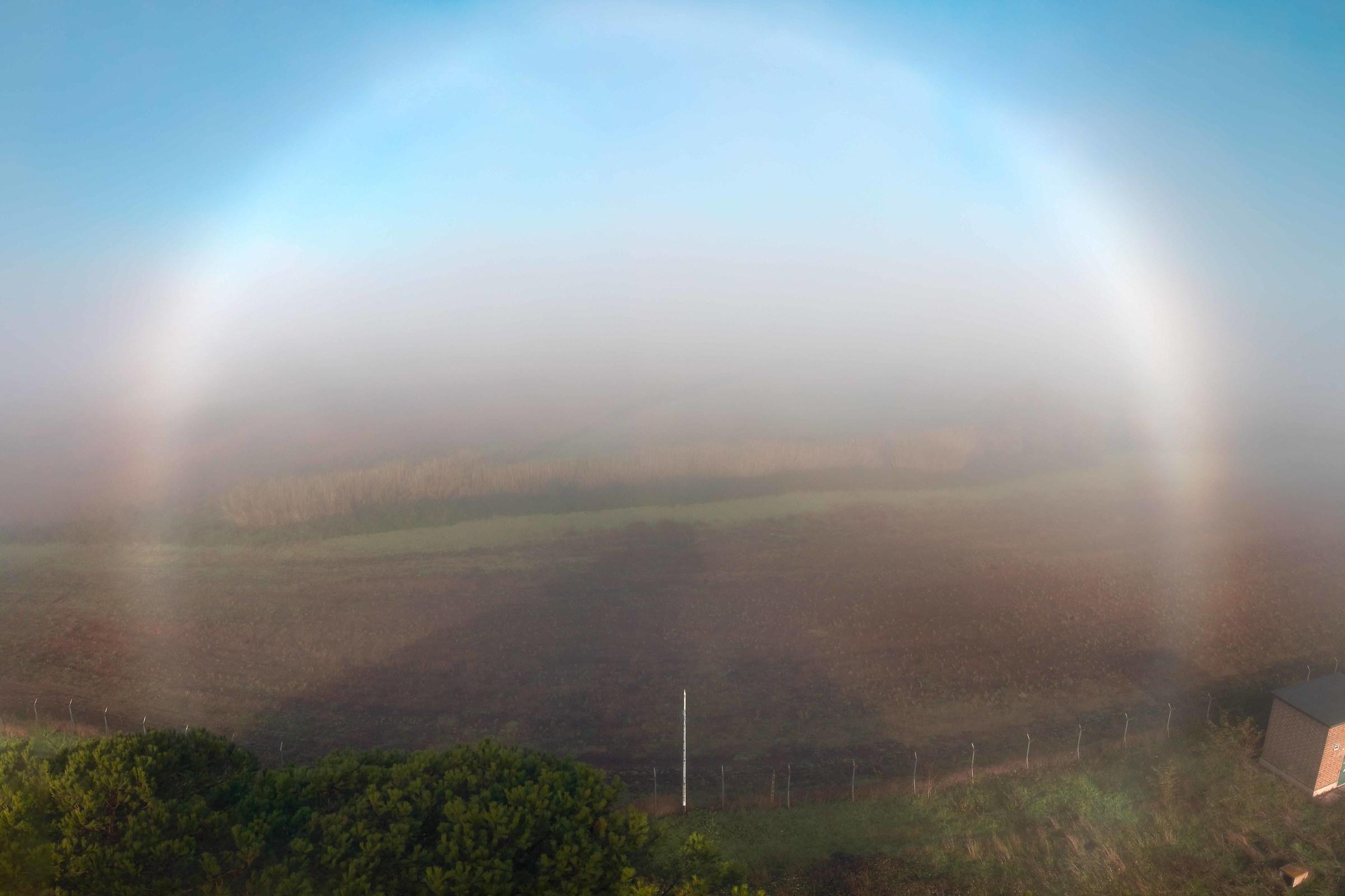 Fogbow...