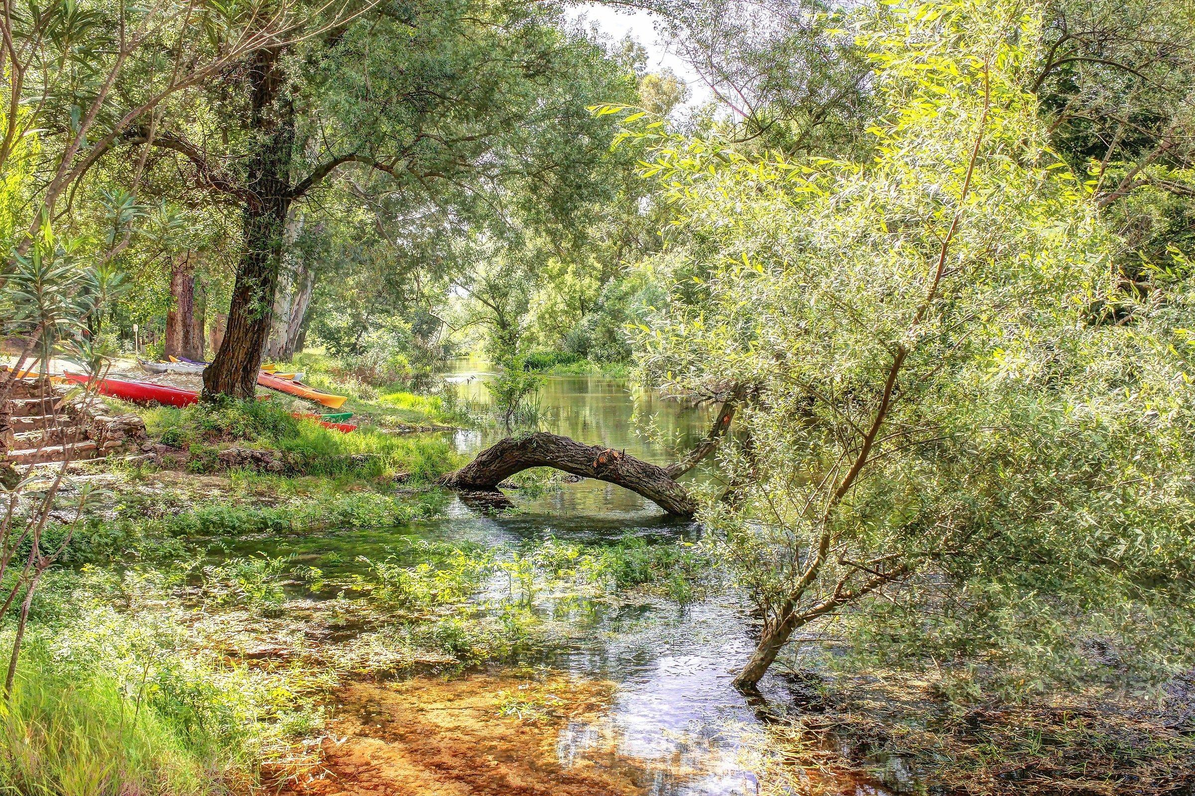 Cedrino River...