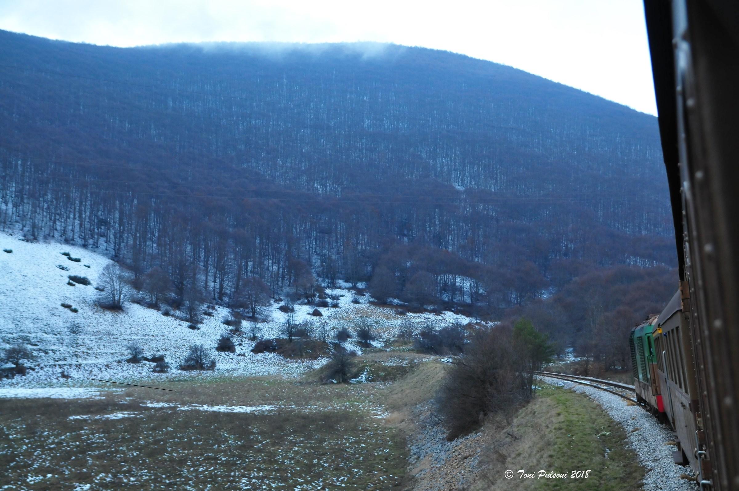 The Siberian of Abruzzo...