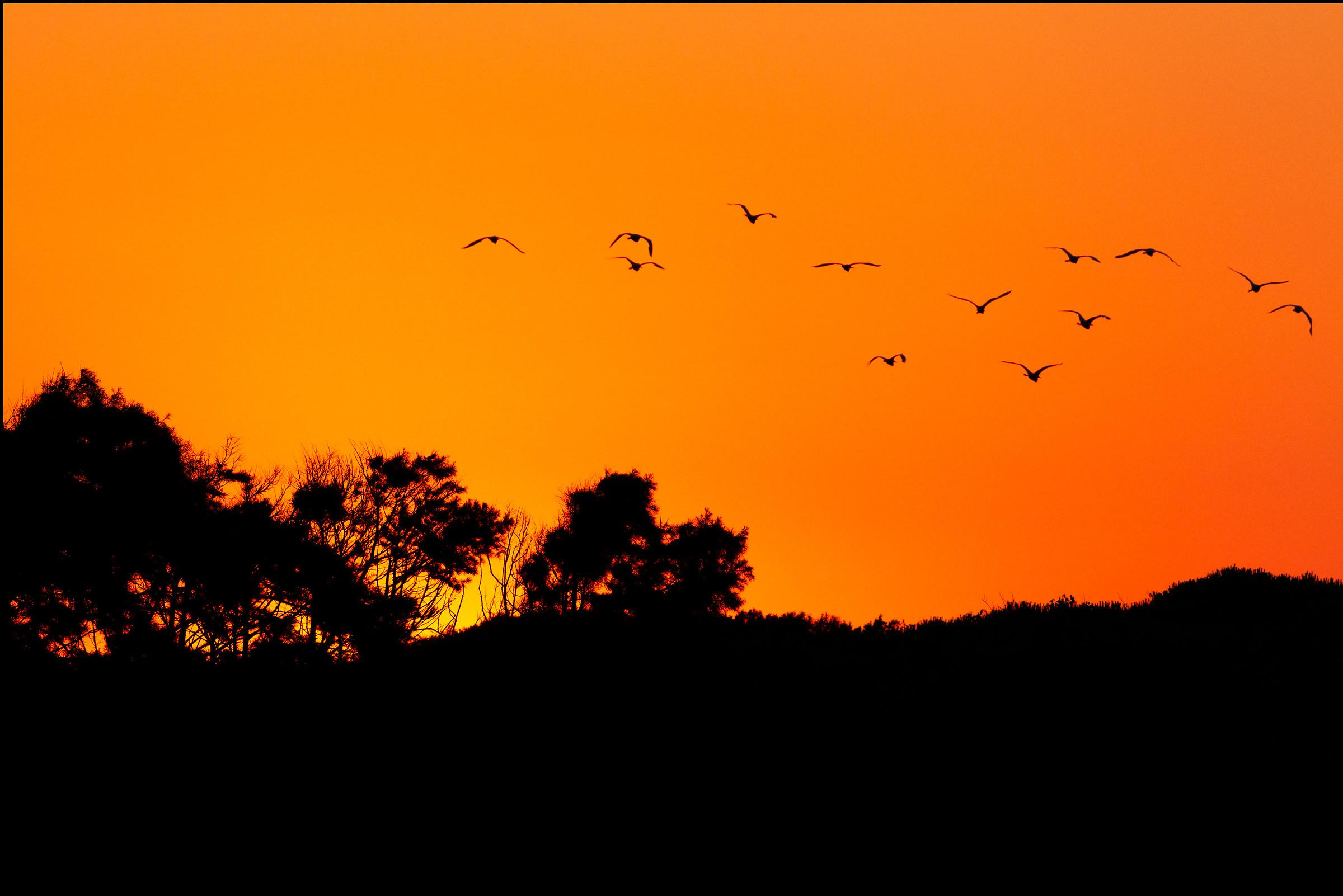Sunset at Circeo National Park...